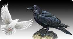 The Parable Of The Raven And The Dove Part 1